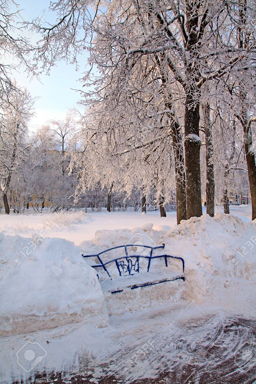 bench in winter park Stock Photo - 7705334
