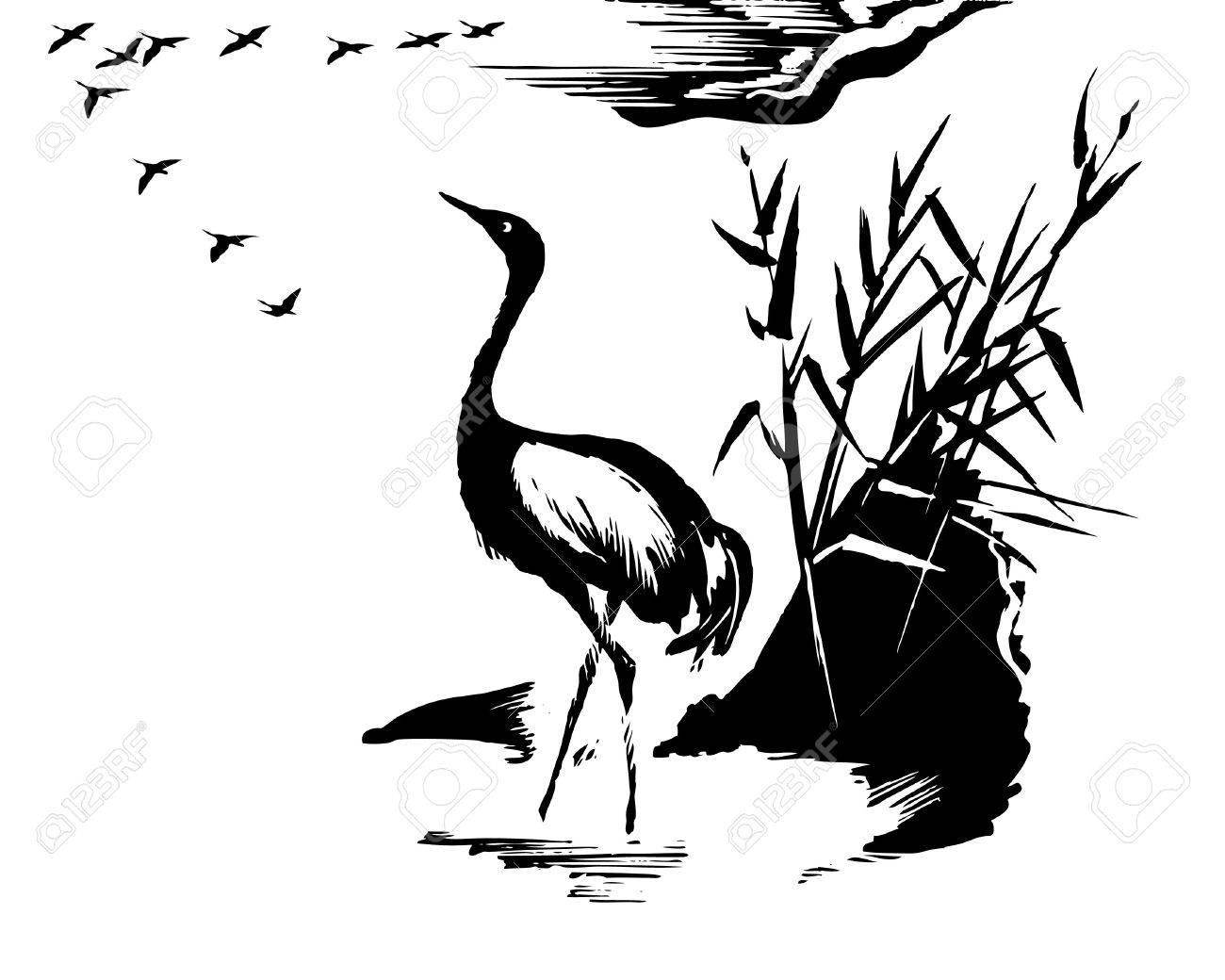 illustration of the crane on white background Stock Vector - 7735683