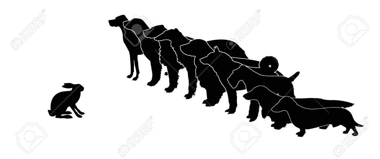 silhouette hunt dogs and rabbit on white background Stock Vector - 7780158