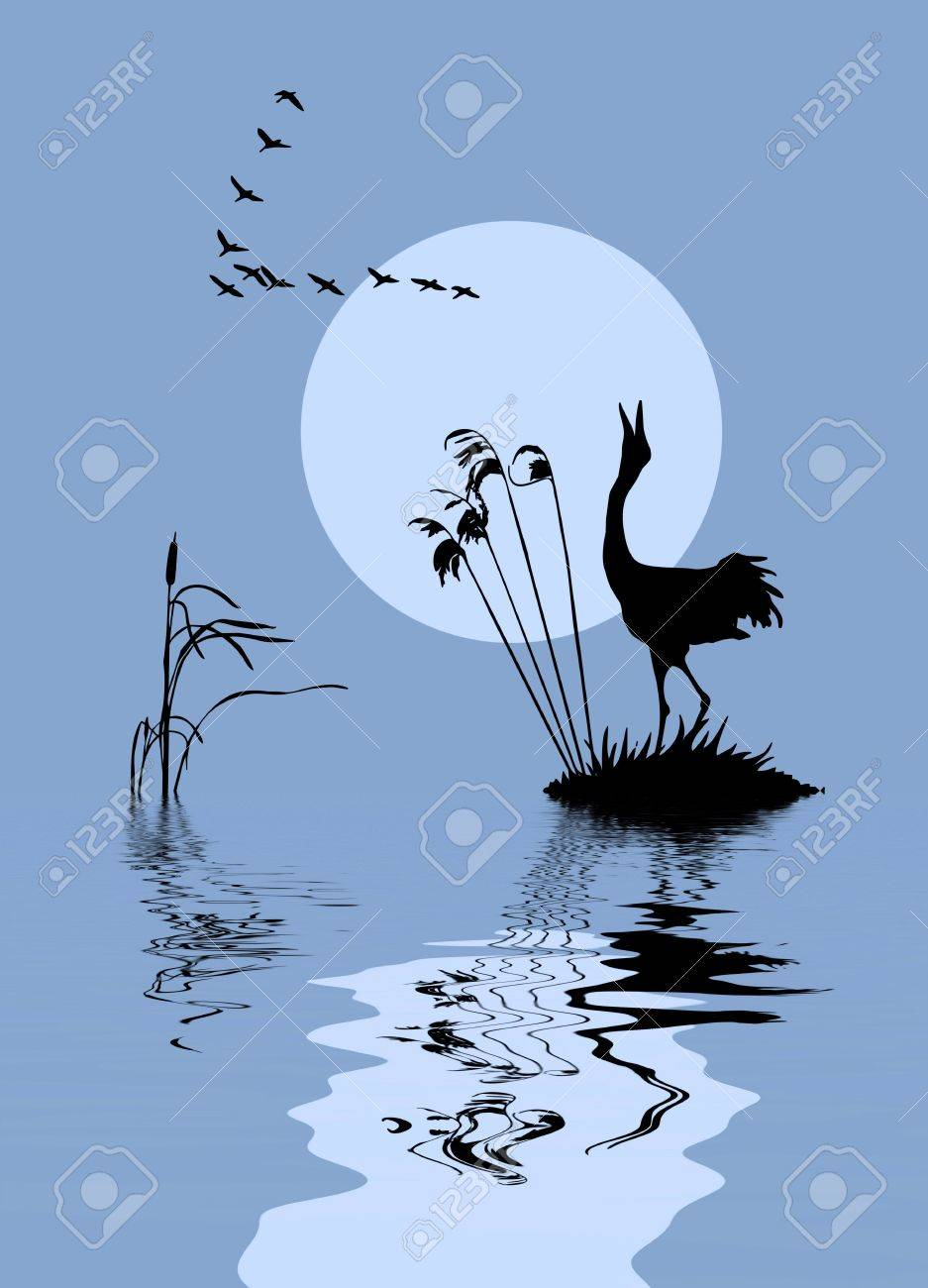 silhouette of the birds on lake Stock Vector - 7830978