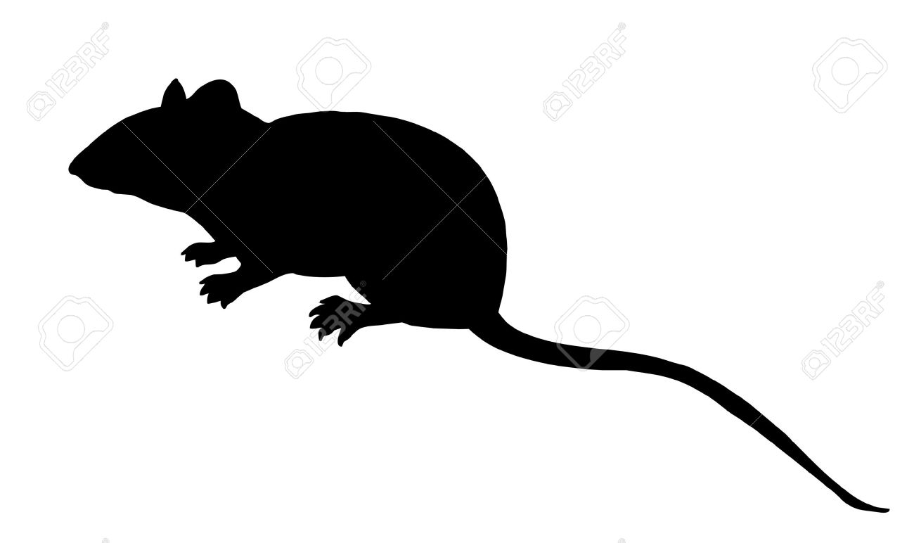 vector silhouette mouse on white background Stock Vector - 8922498