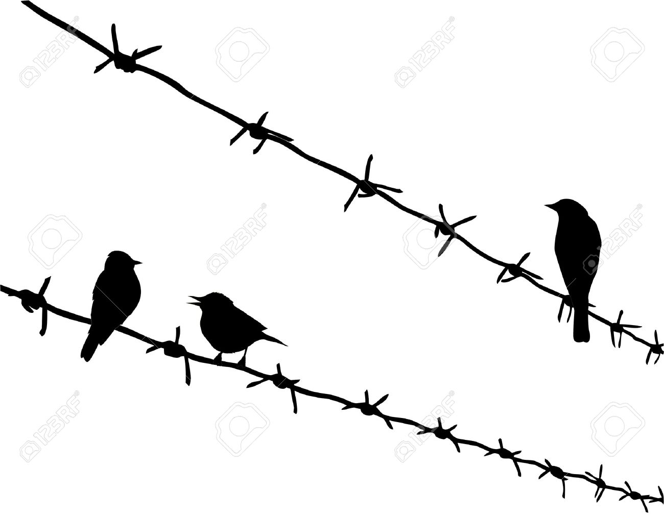 Vector Silhouette Three Birds On Barbed Wire Royalty Free Cliparts ...