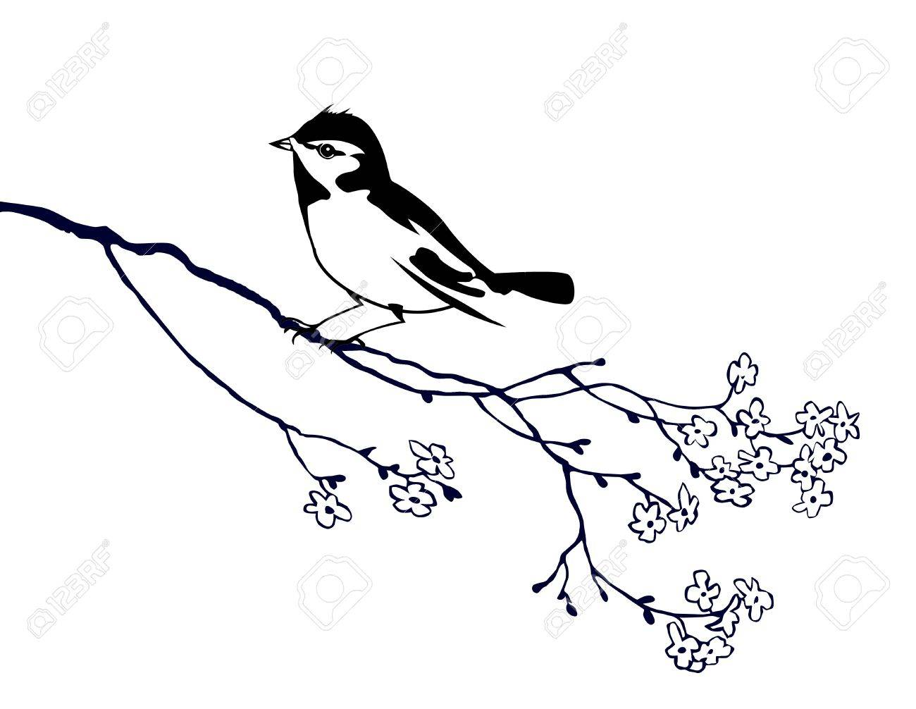 vector silhouette of the bird on branch tree Stock Vector - 9166072