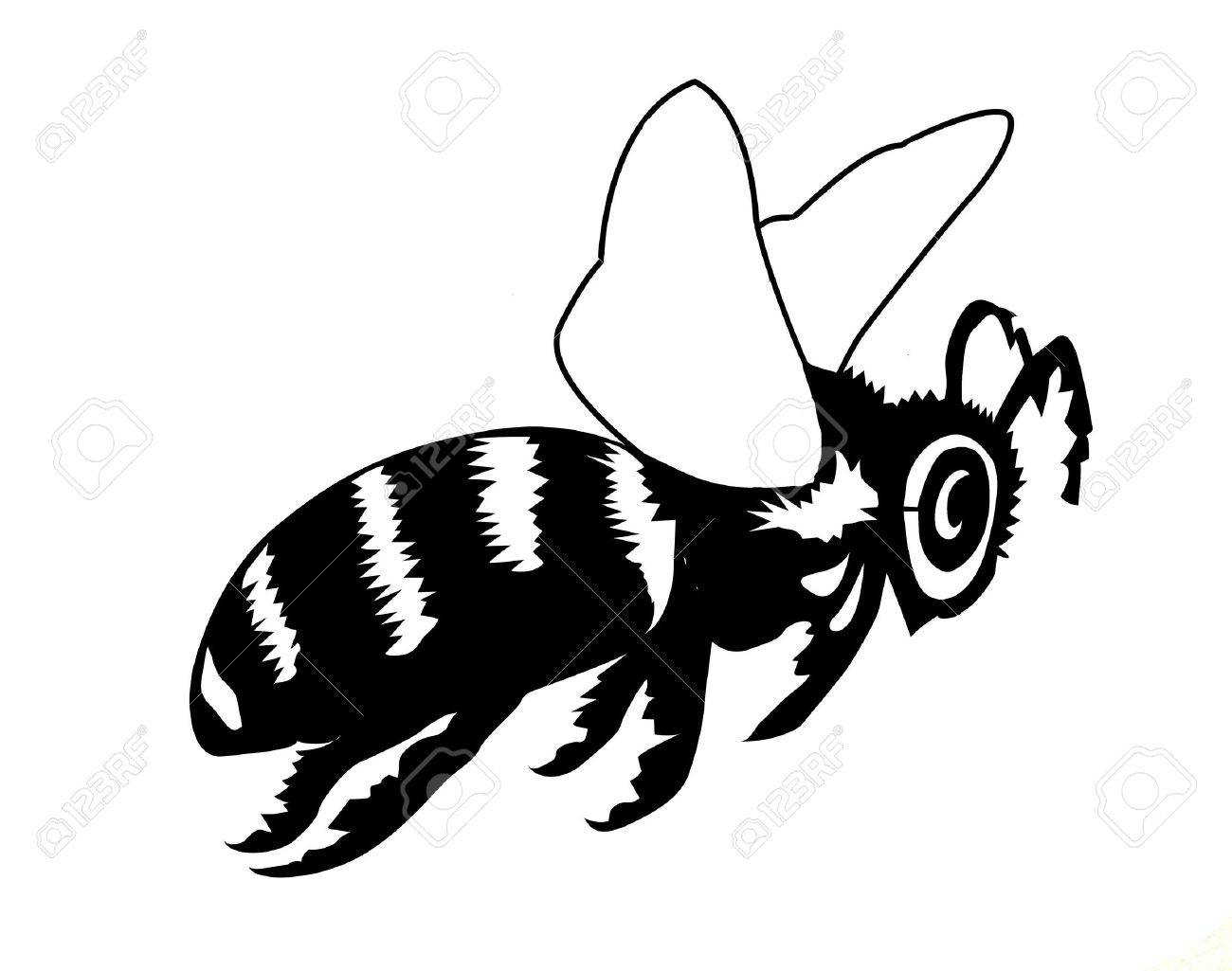 vector silhouette of the bee on white background Stock Vector - 9251170