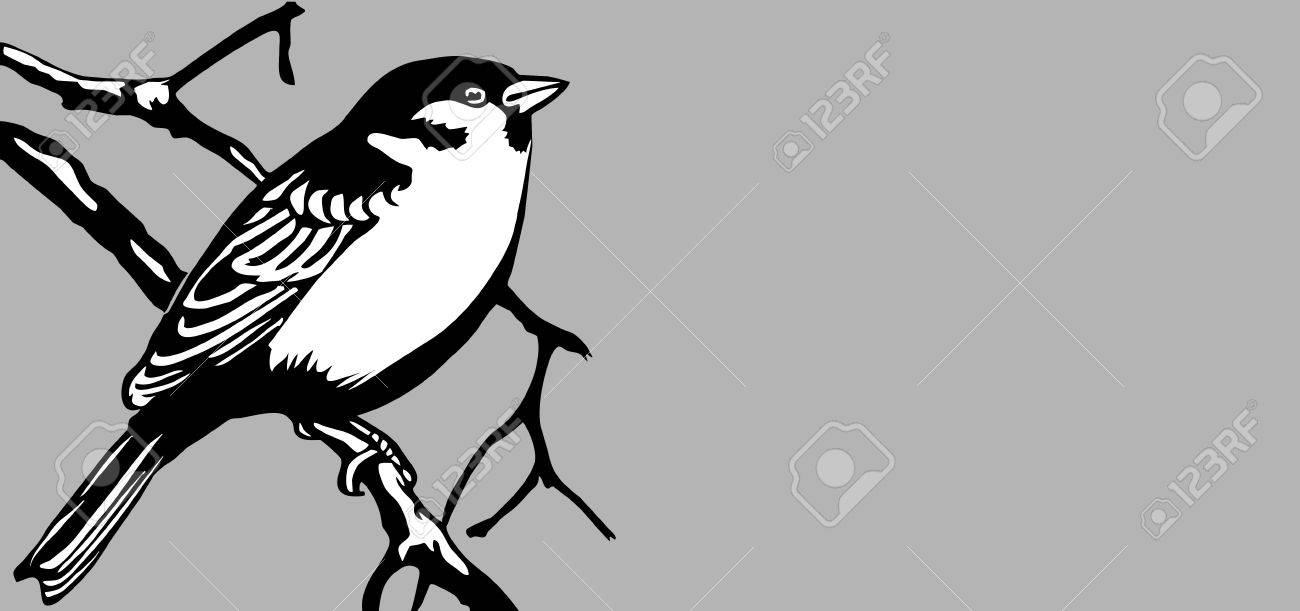 bird silhouette on gray background, vector illustration Stock Vector - 13033458