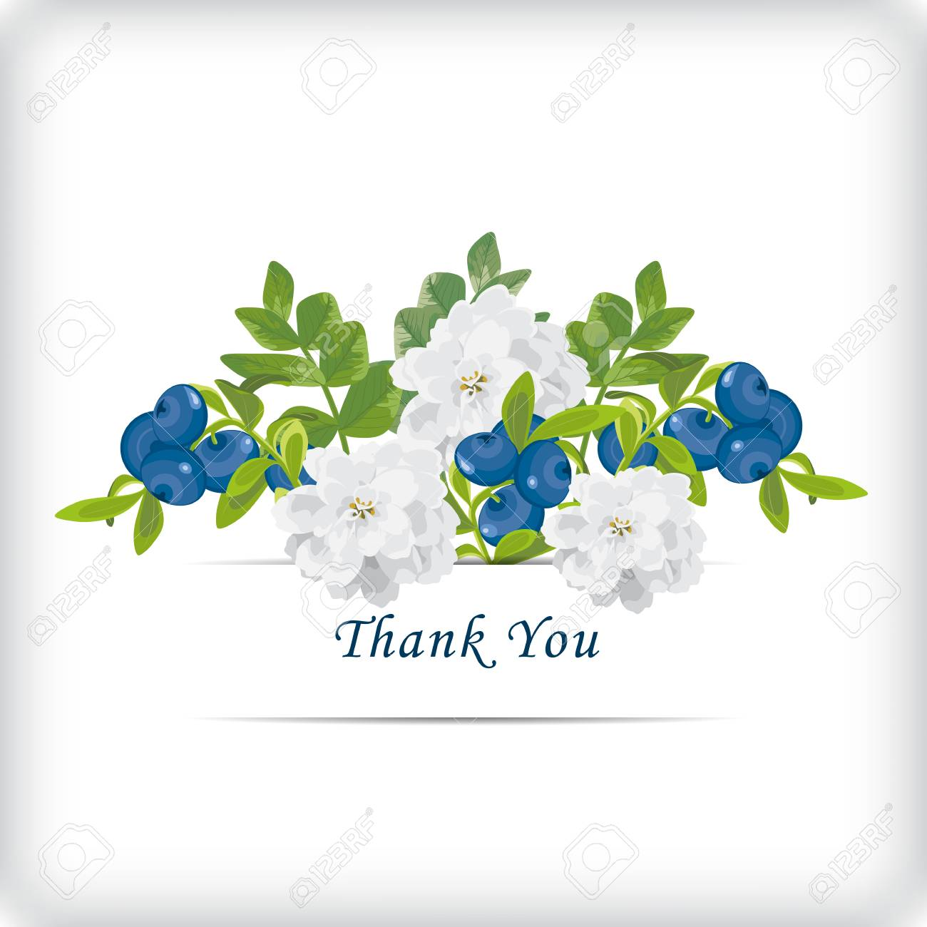 Floral Thank You Card With Beautiful Realistic White Flowers Royalty Free Cliparts Vectors And Stock Illustration Image 97701057