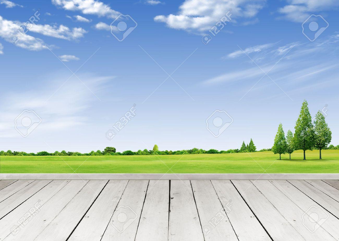 Terraza De Madera Mirando Por Sobre Un Cielo De Nubes Tropicales Y Campo De Césped Verde
