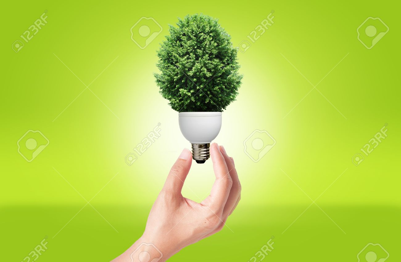 Hand holding Lamp with green tree for green eco concept - 10489666