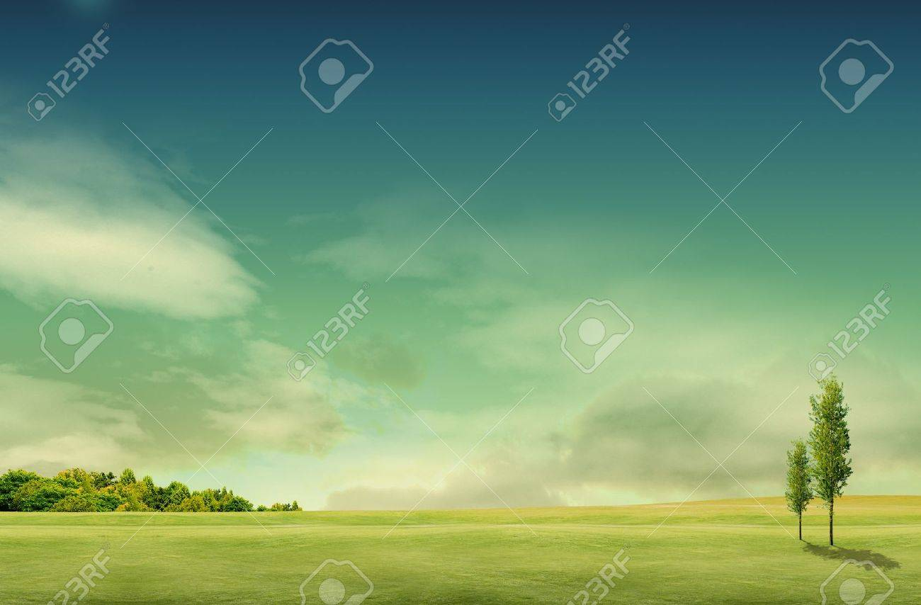 field landscape with trees Stock Photo - 10504188