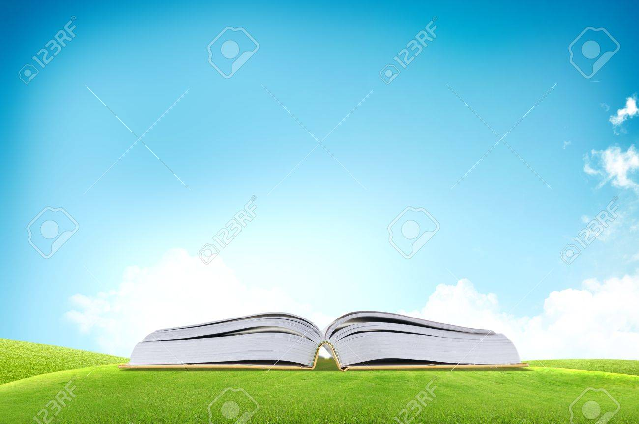 Open book on he green grass field over the blue sky Stock Photo - 11071426