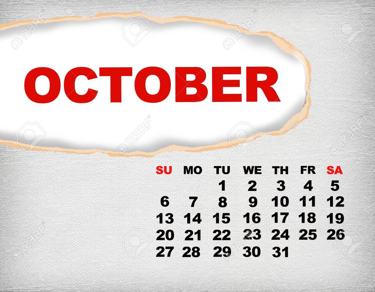 2013 year calendar Stock Photo - 17050360