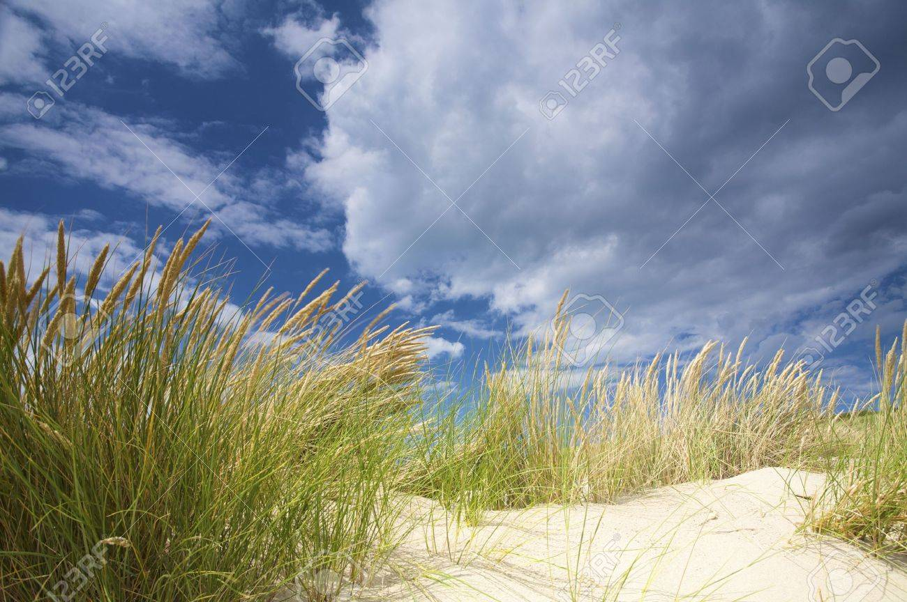 dunes near the sea with storm clouds and a blue sky Stock Photo - 4641925