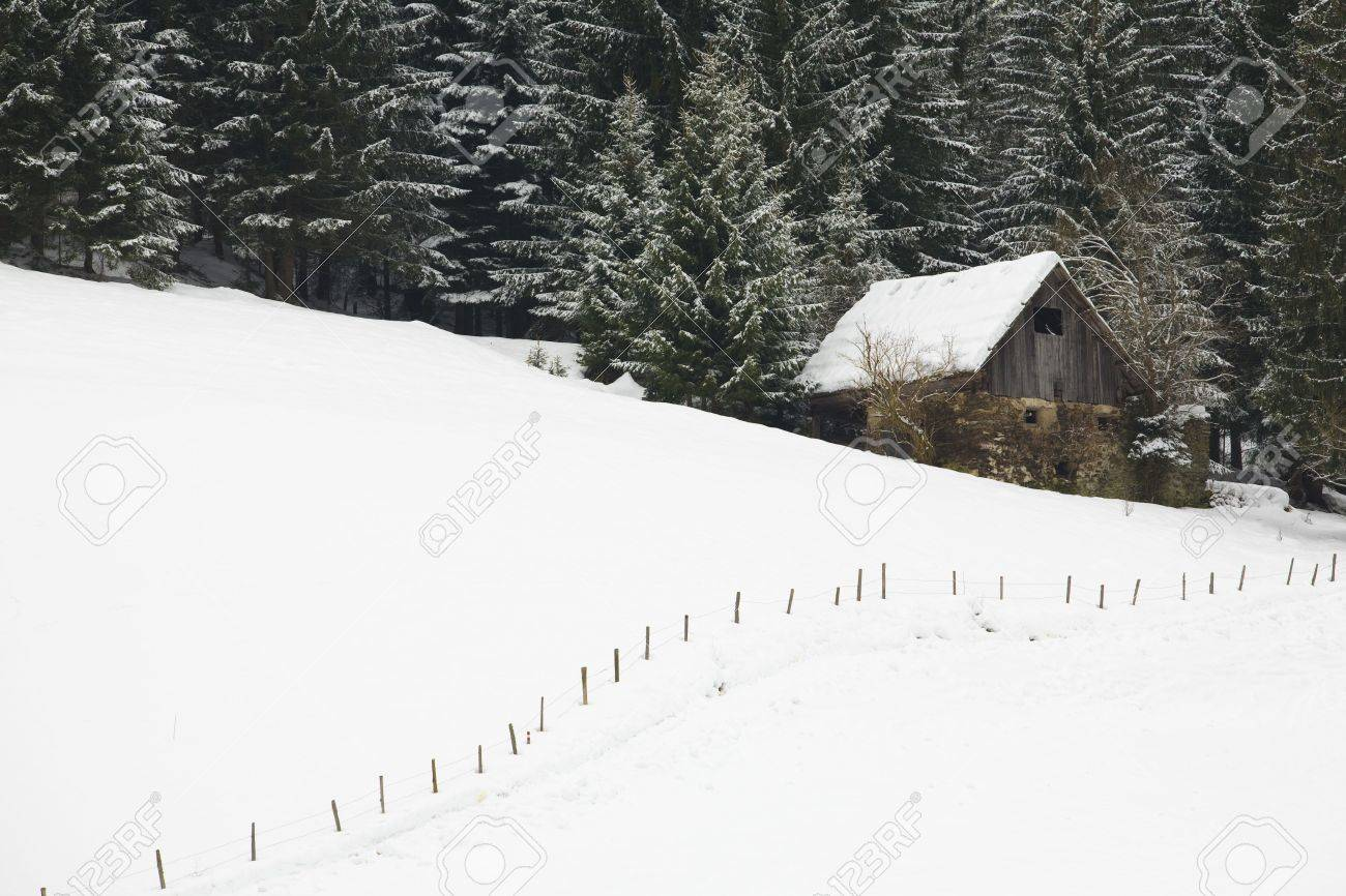 Mountain cabin in winter in a forest covered with snow Standard-Bild - 5932800