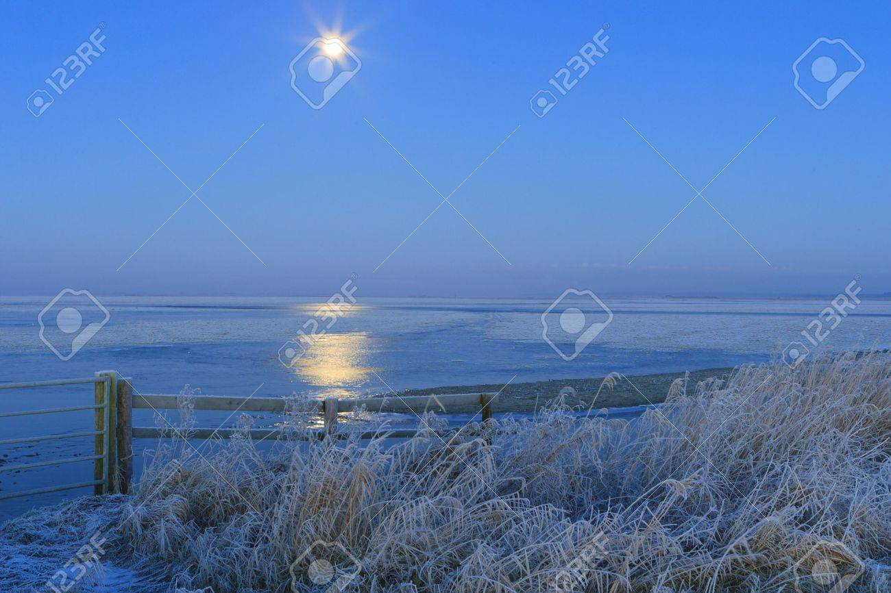 Blue winter landscape in nature with moon and field Standard-Bild - 7704193