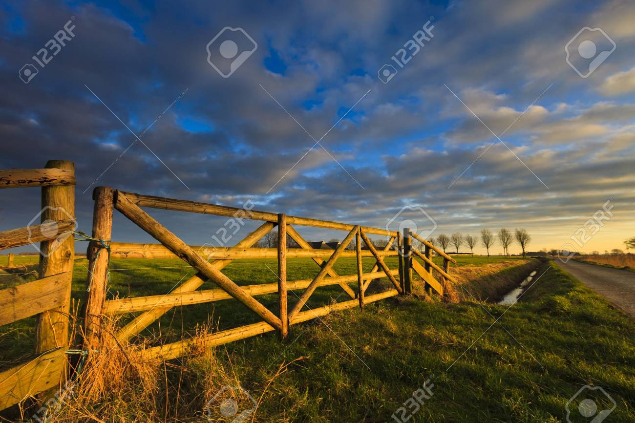 Beautiful sunset at a field in summer Standard-Bild - 13874945