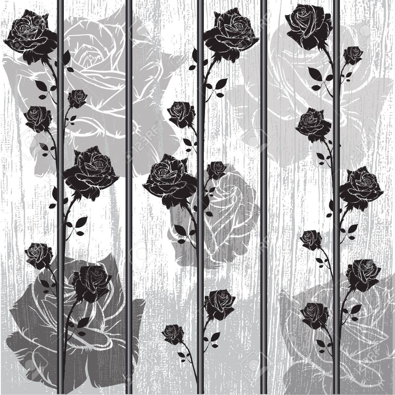 graphic black roses wall design - 19115325