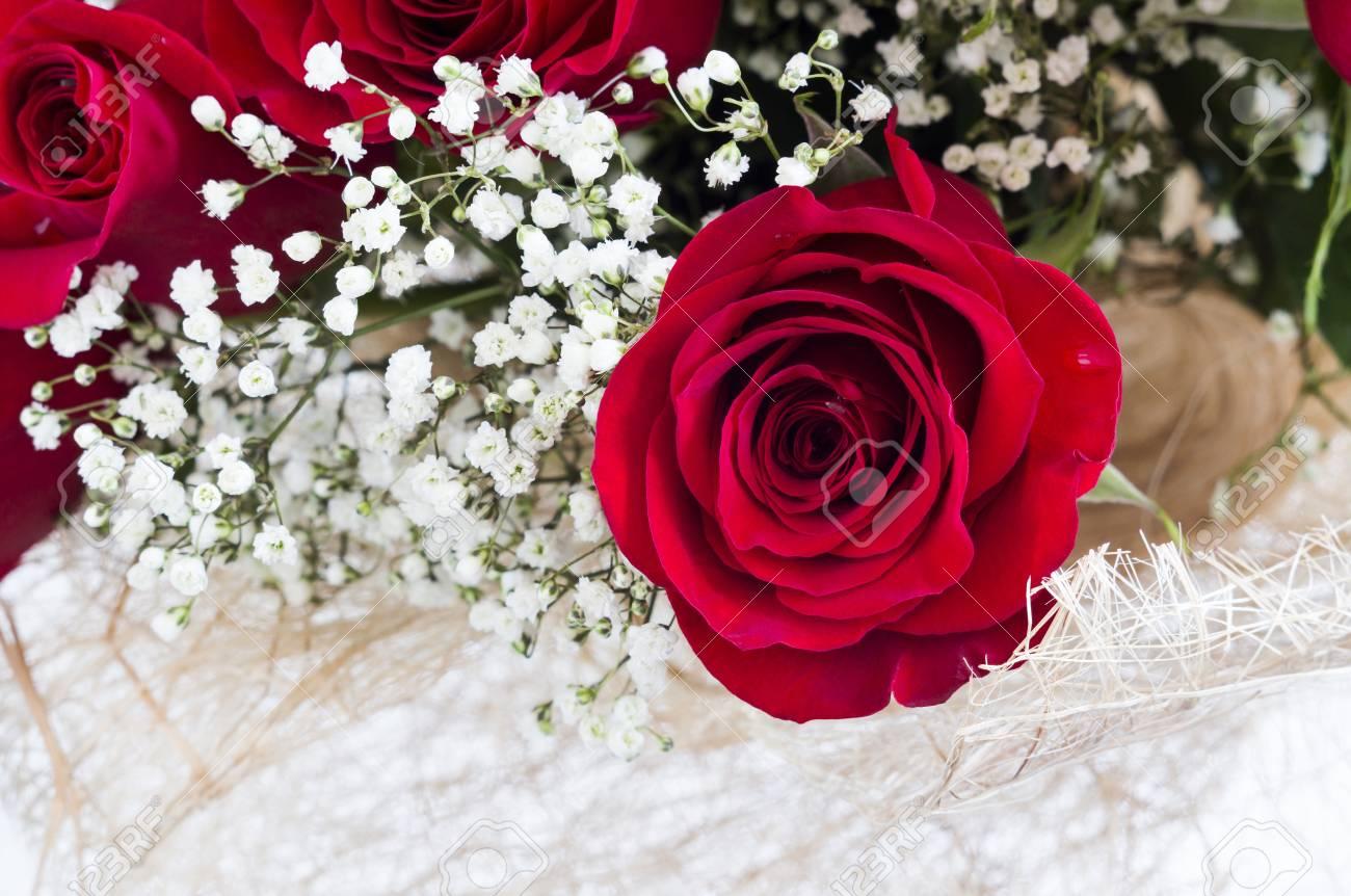 Un Ramo De Hermosas Rosas Rojas Con Pequeñas Flores Blancas Fotos