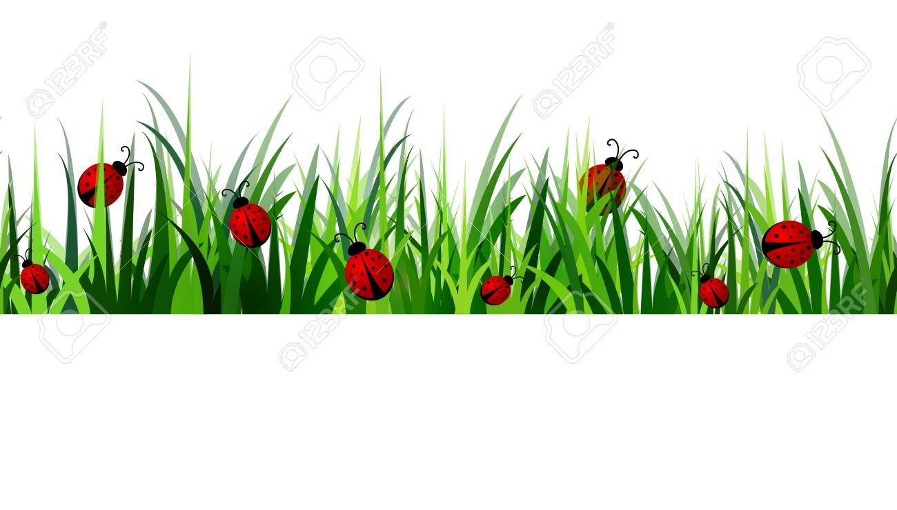green grass seamless isolated clip art vector on white royalty free rh 123rf com  grass vector artwork