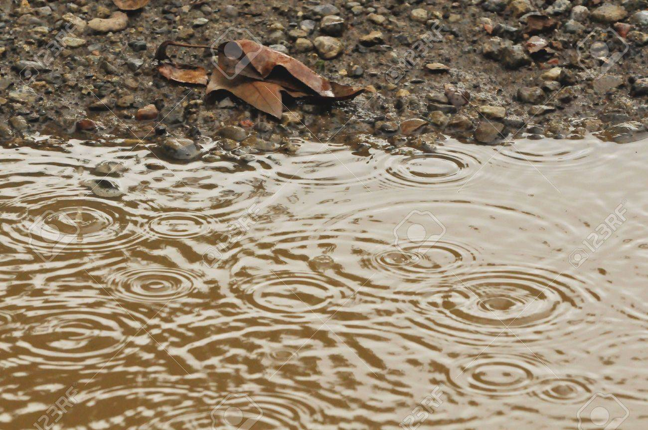 raindrops in mud puddle with dead leaf Stock Photo - 4315149
