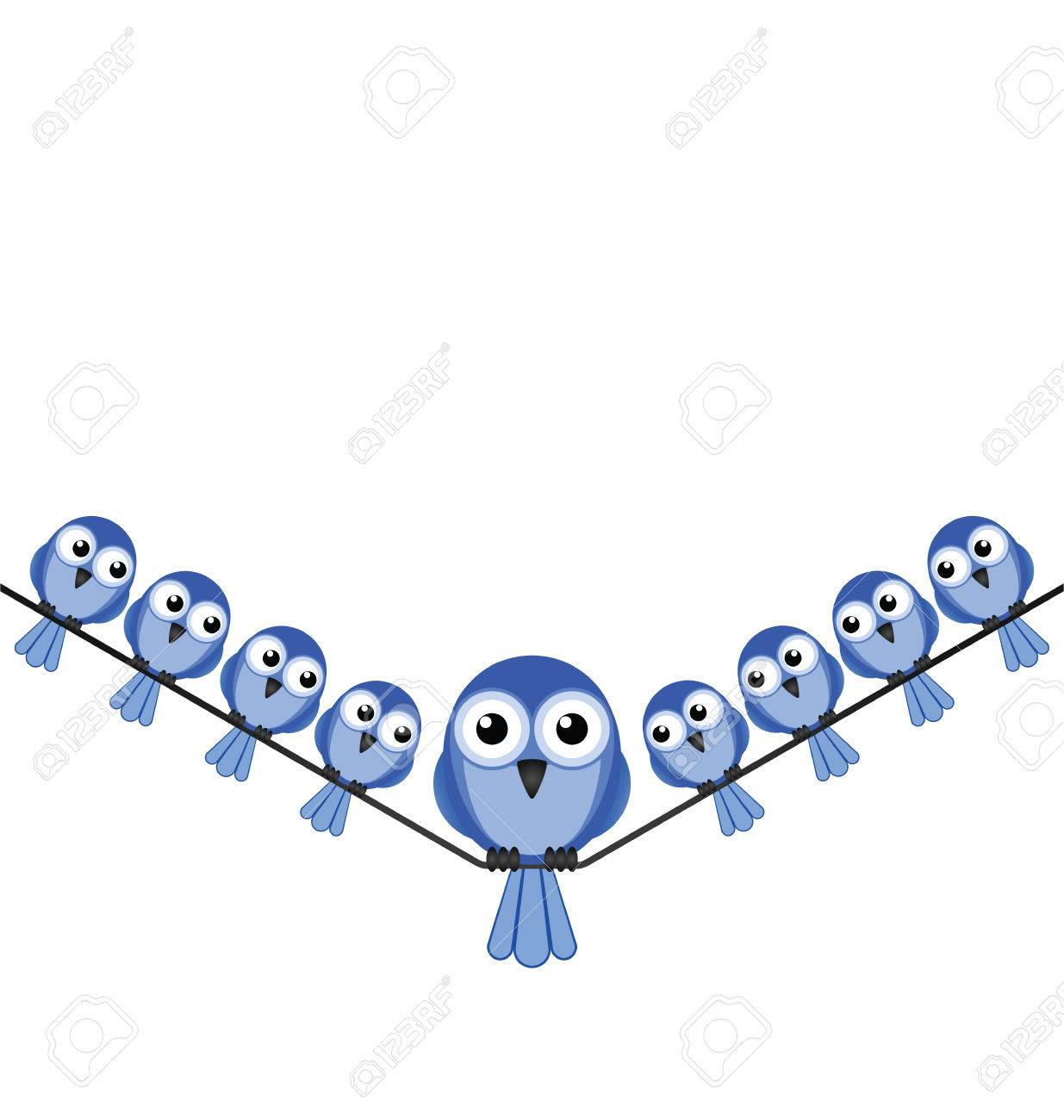 Overweight Bird Sat On A Wire Isolated On White Background With ...