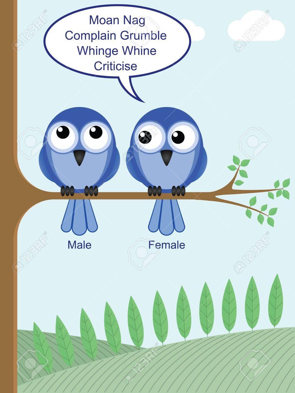 regard humoristique sur la façon de déterminer le sexe des oiseaux
