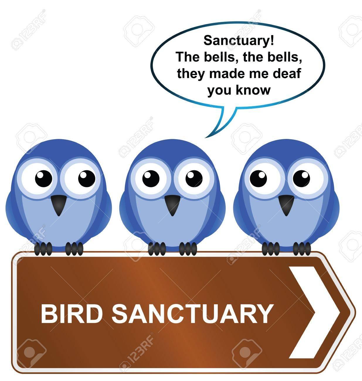 Bird impersonating Quasimodo requesting sanctuary isolated on white background Stock Vector - 12197136
