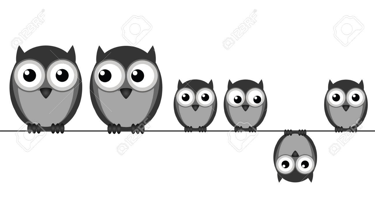 Owl Family Sat In A Wire Isolated On White Background Royalty Free ...