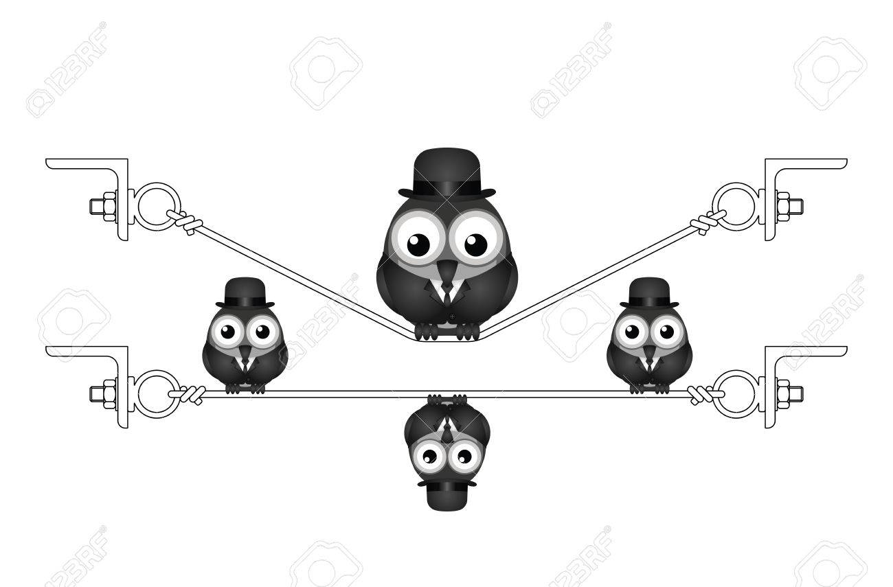 Fat Overweight Bird On A Flexed Steel Wire Isolated On White ...