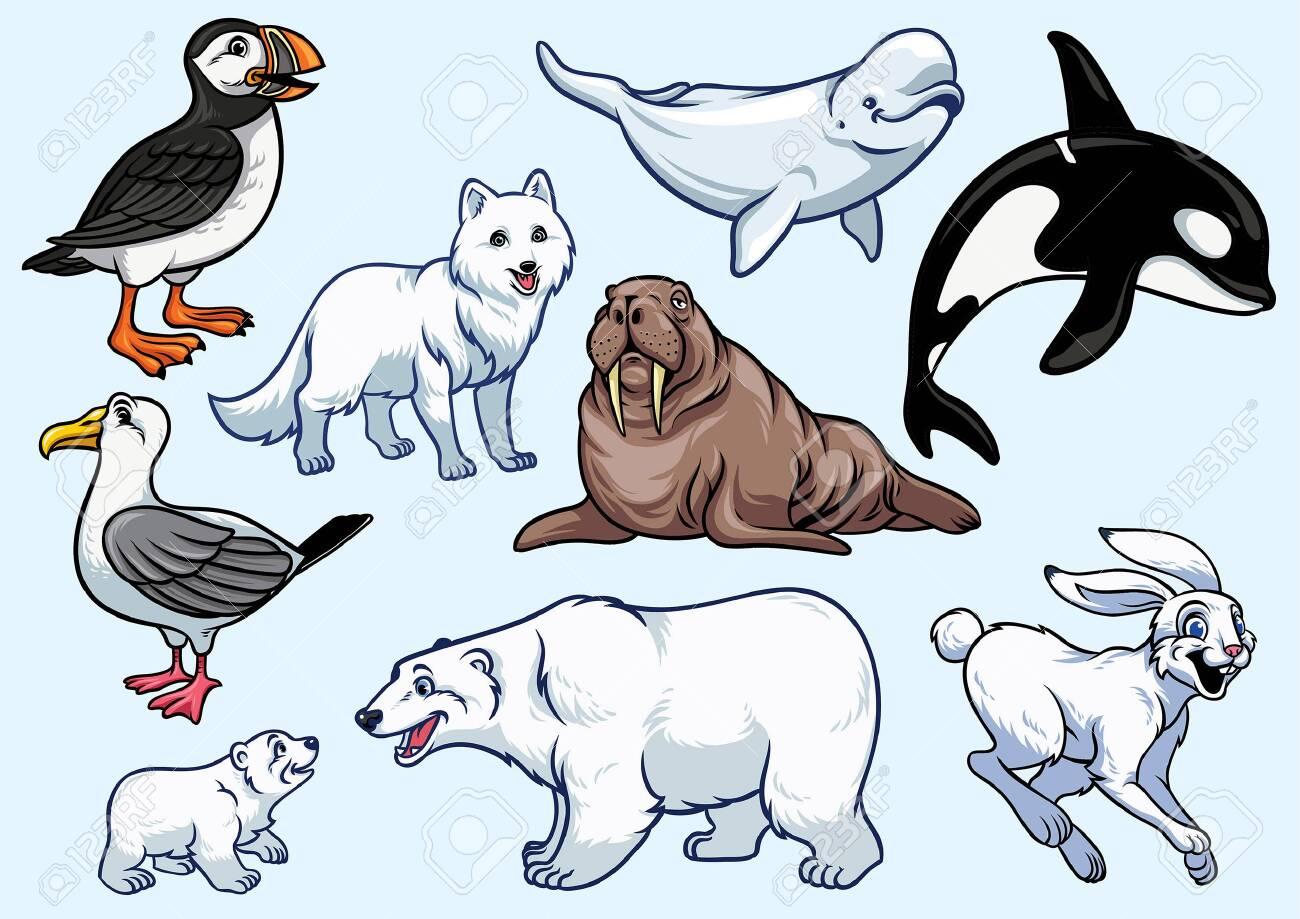 set bundle of arctic animal - 131749771