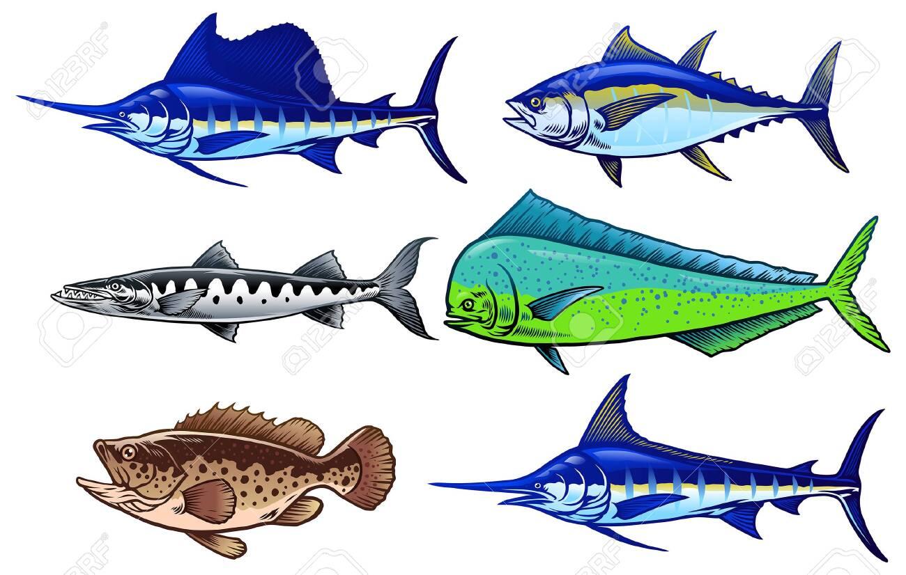 set of saltwater fishing game - 146345653