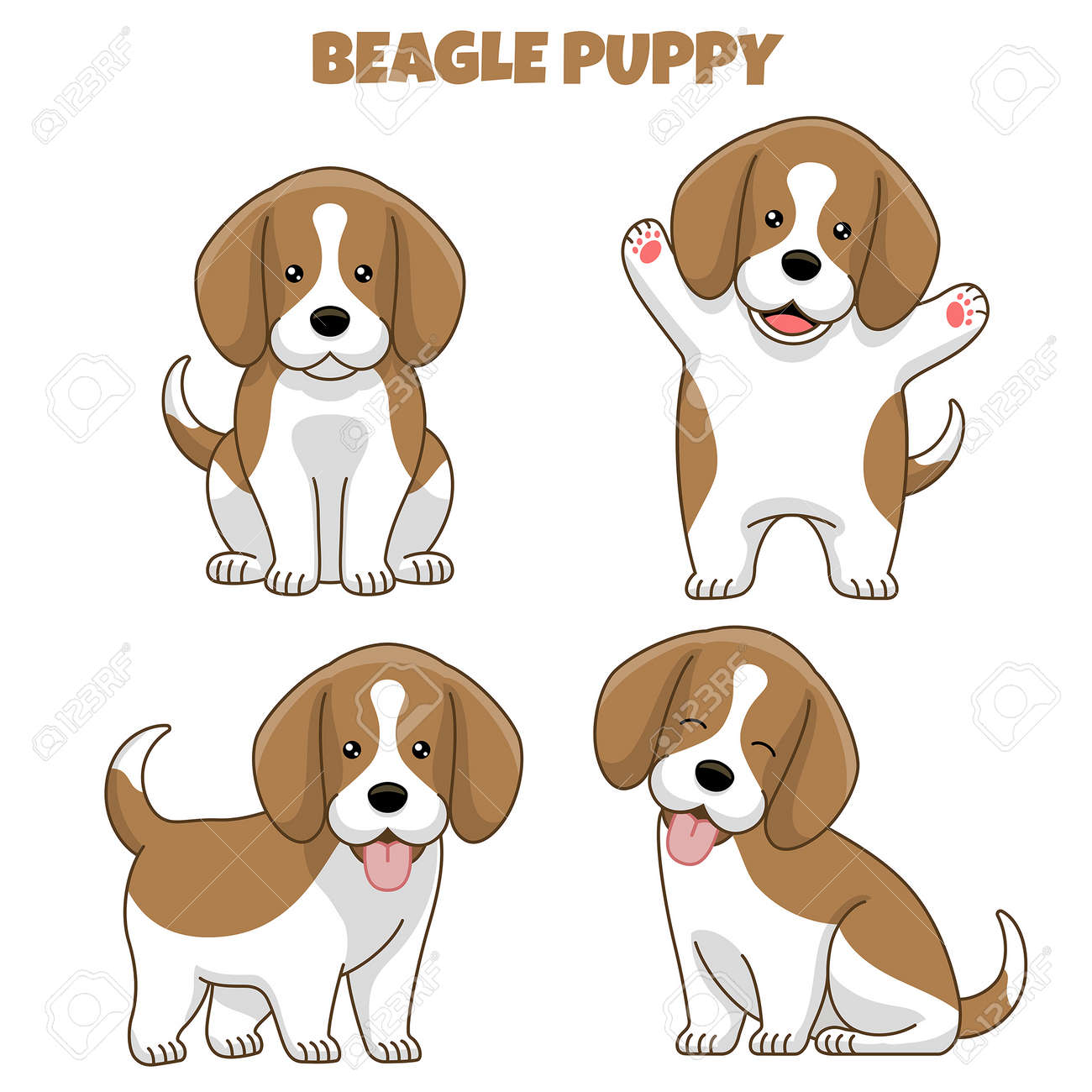 vector set of beagle dog puppy in cartoon style - 163987833