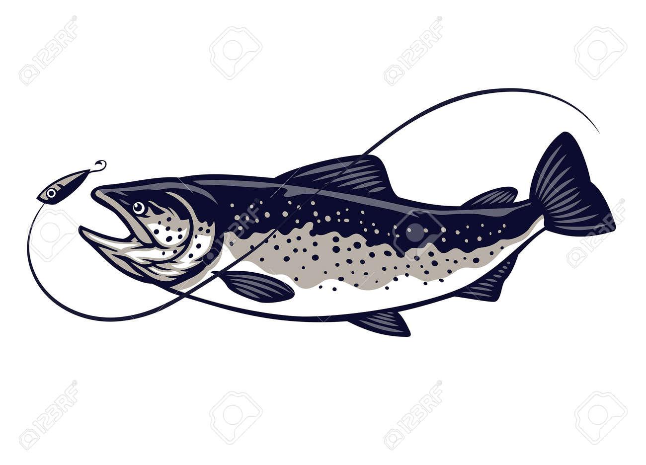 salmon fish swimming catching the lure - 167531823