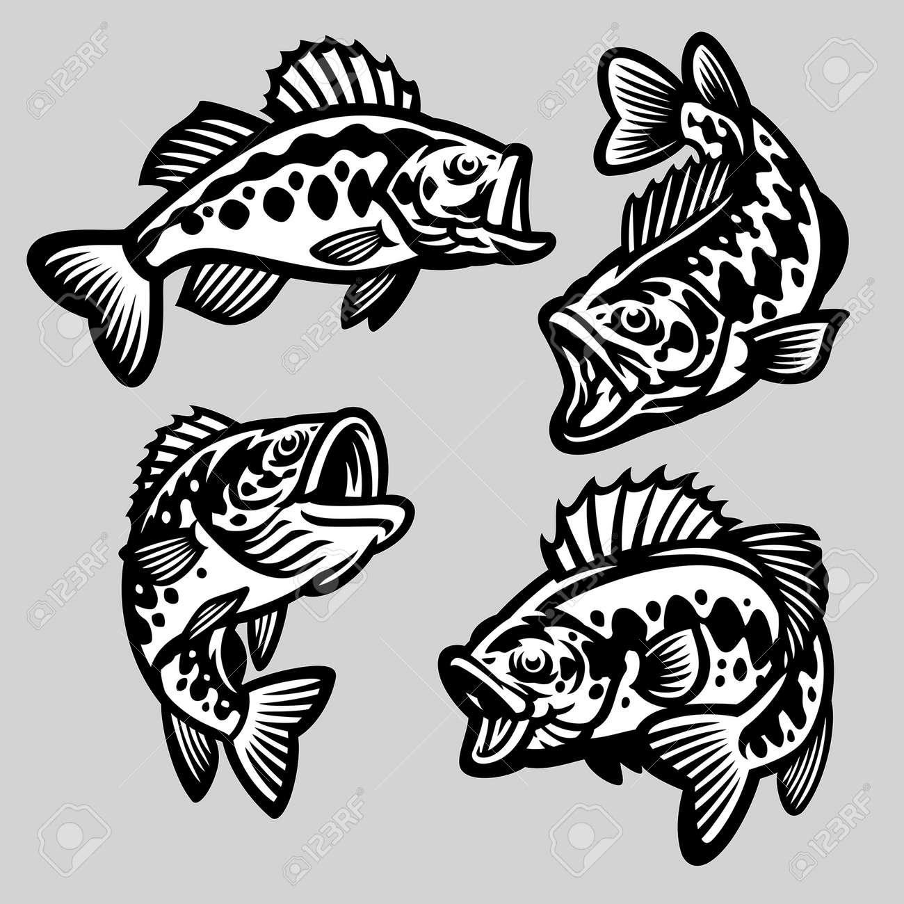 vector set of cartoon largemouth bass fish - 168290950