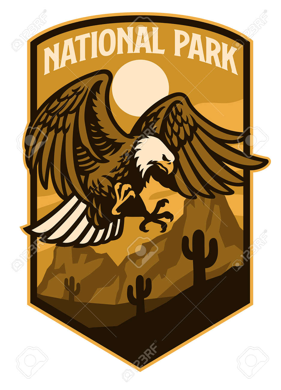 vector of bald eagle of national park style logo - 171104009