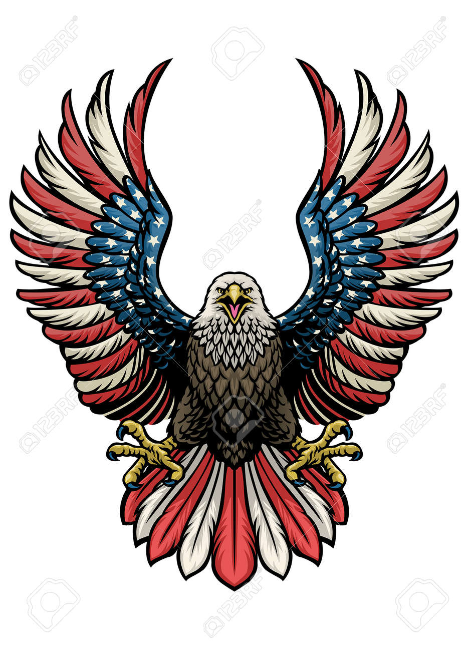 vector of eagle of america in hand drawn style - 171104018