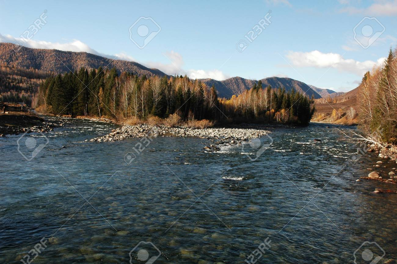 Landscape of stream and woods in autumn Stock Photo - 8576481