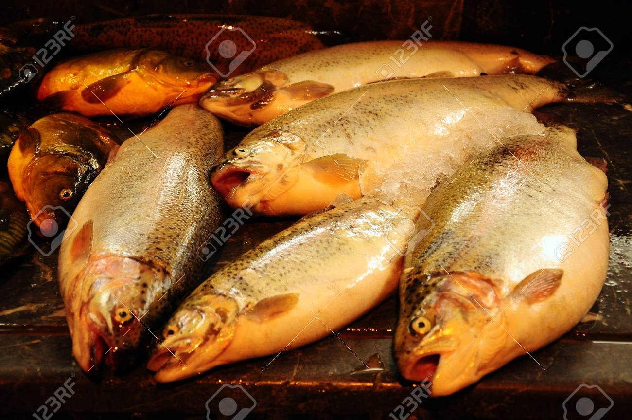 fishes on stand in order to sale Stock Photo - 17751445