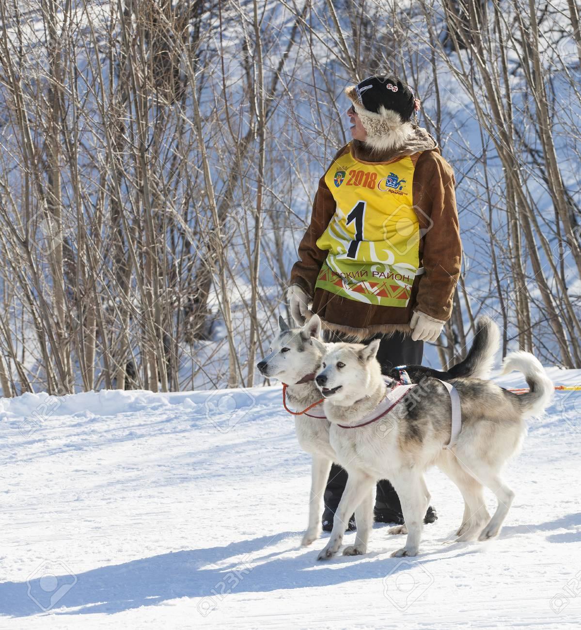 2017: Traditional Kamchatka Dog Sledge Race Elizovsky sprint