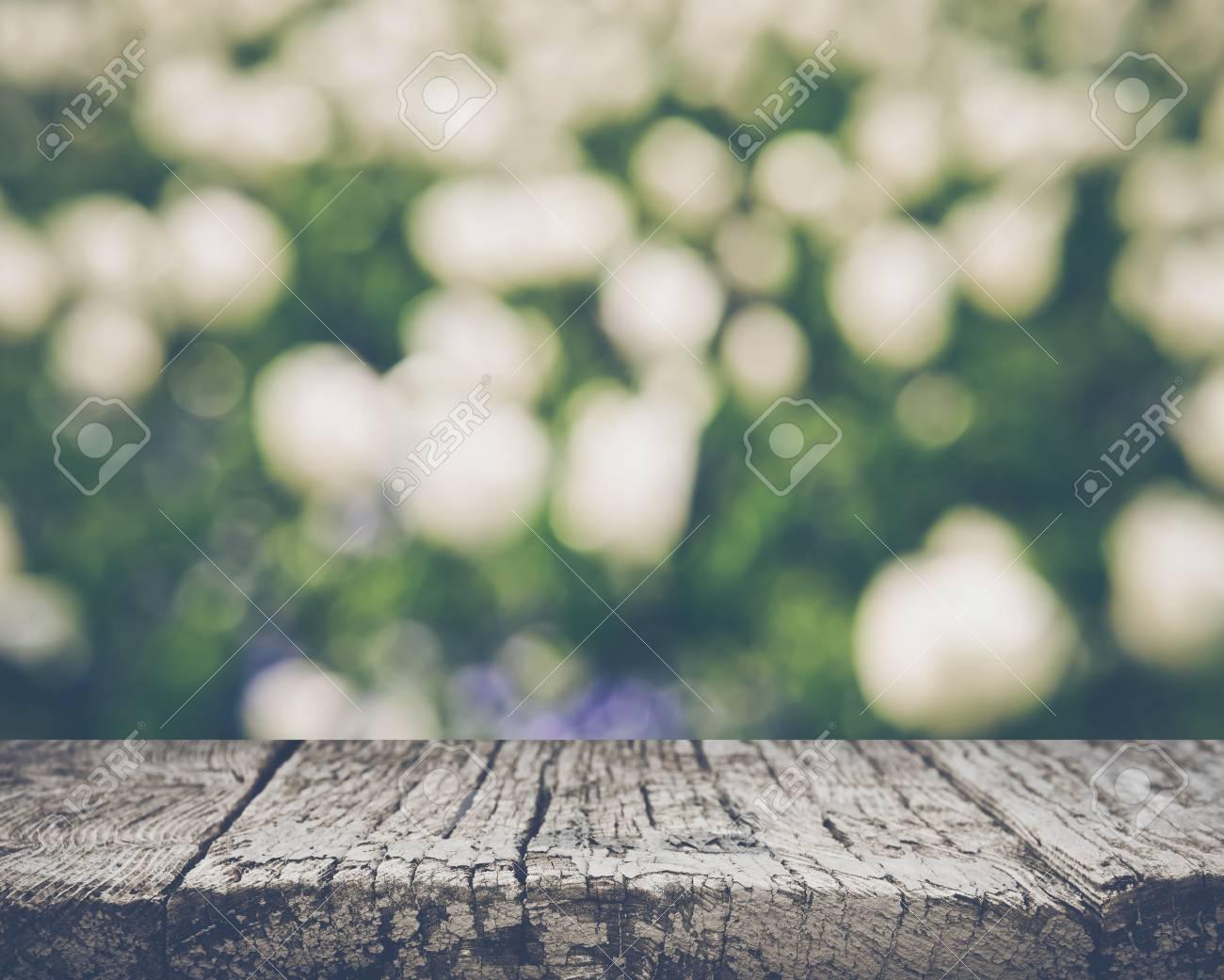 White Tulip Flowers Blurred - 55007558