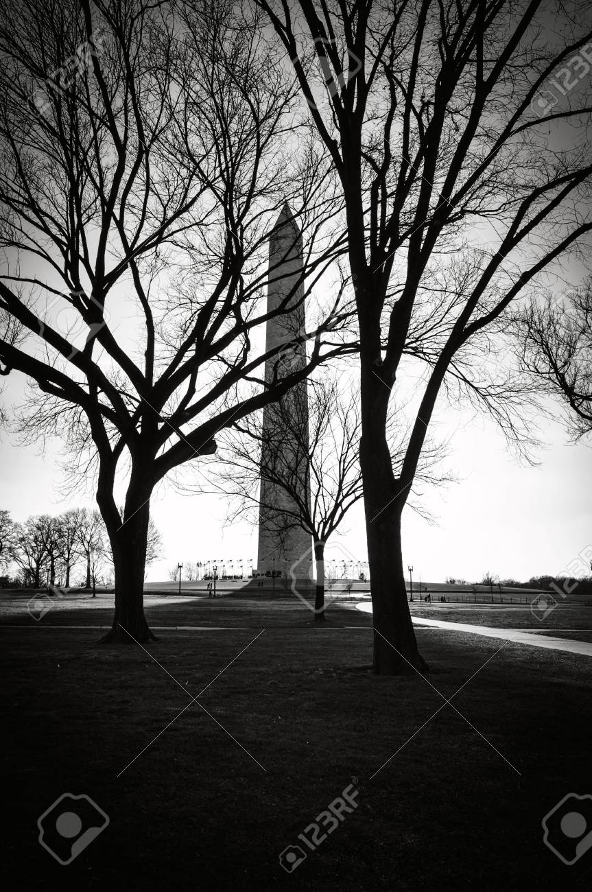 Washington Monument in the Winter - 63468389