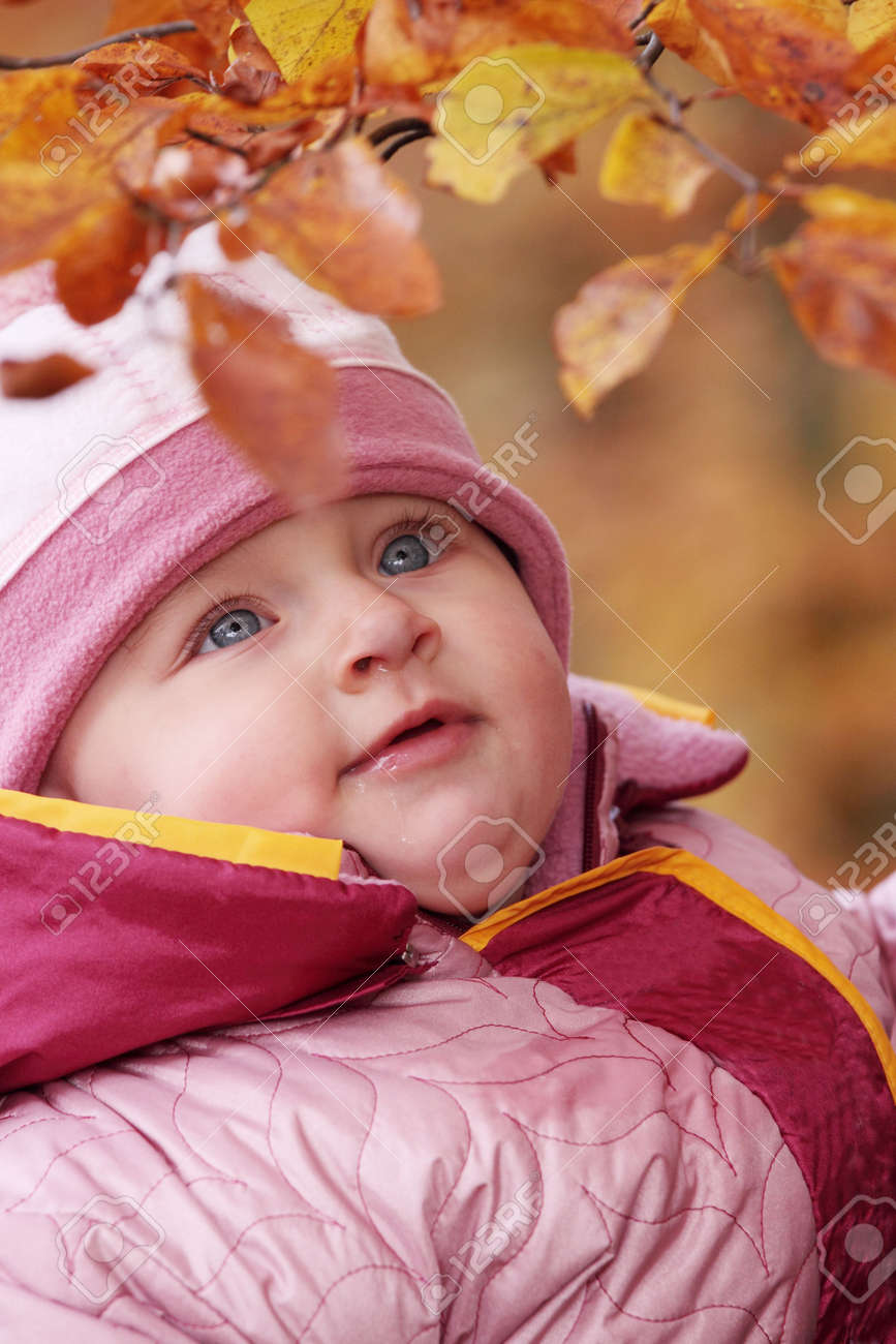 Small baby in forest with yellow leaves Stock Photo - 6350951