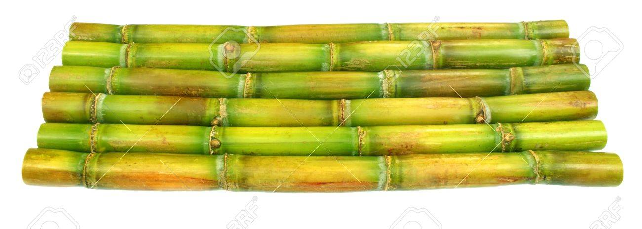 Sugar cane Stock Photo - 10527108