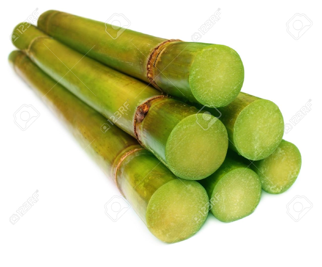 Bunch of fresh sugar cane over white background - 12931639