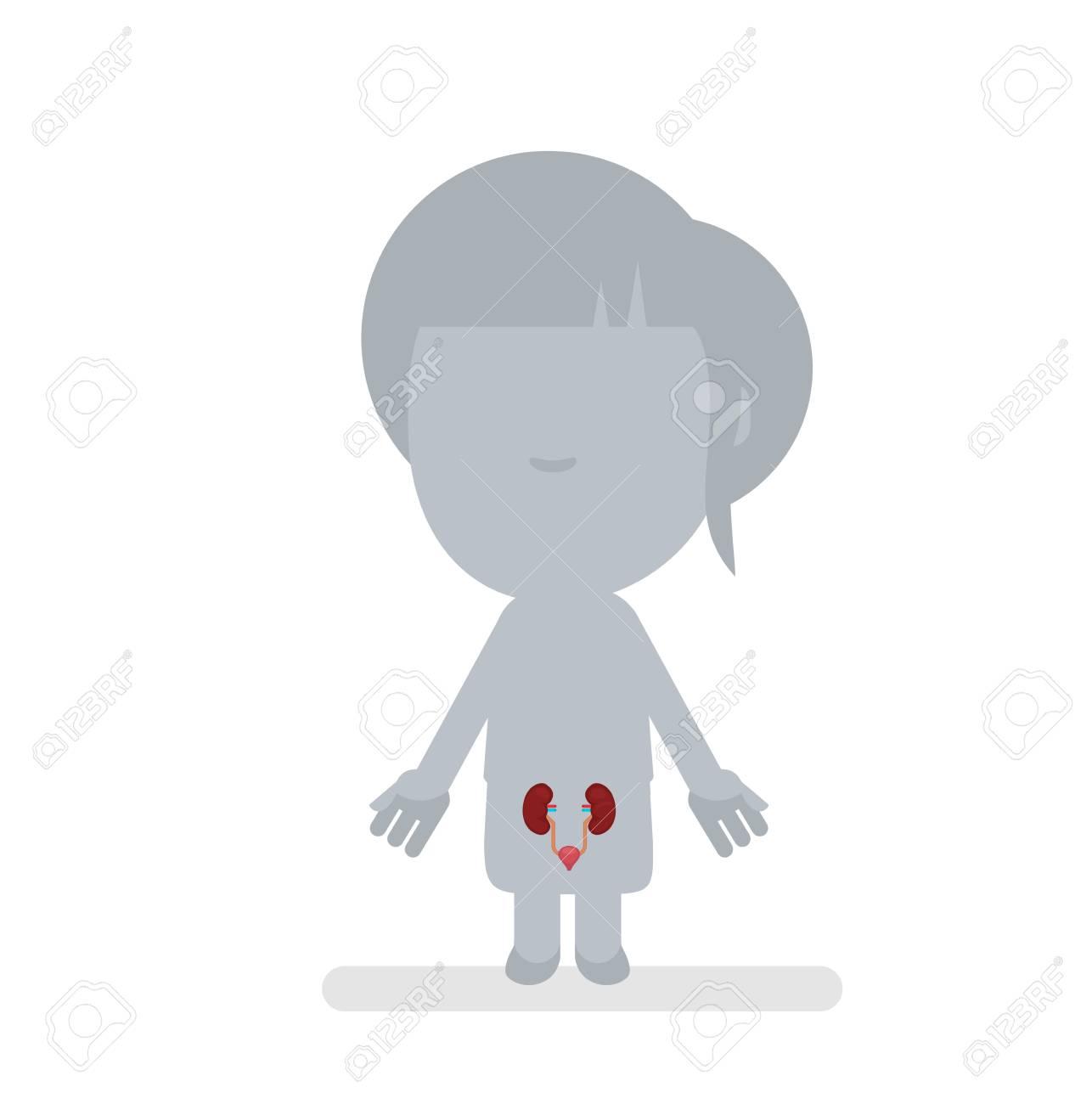 Ausgezeichnet Komplette Anatomie Des Menschlichen Körpers ...