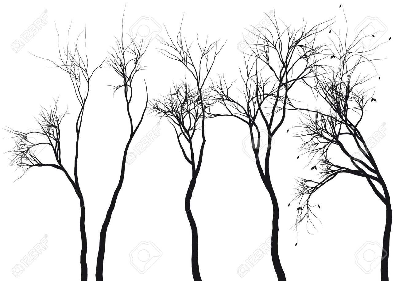 Set Of Detailed Tree Silhouettes, Vector Royalty Free Cliparts ...