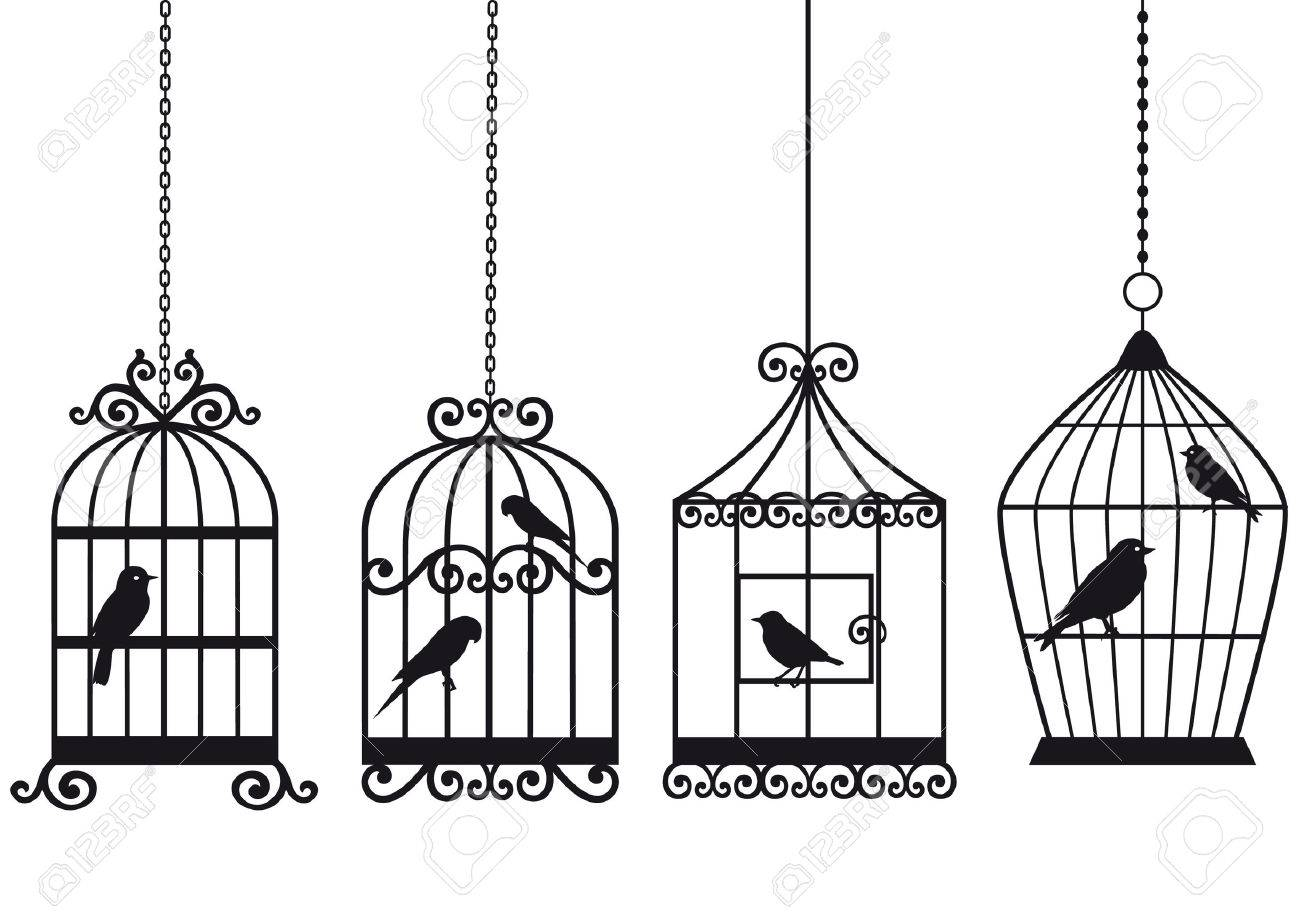 ornamental vintage birdcages with birds, vector background Stock Vector - 7081543