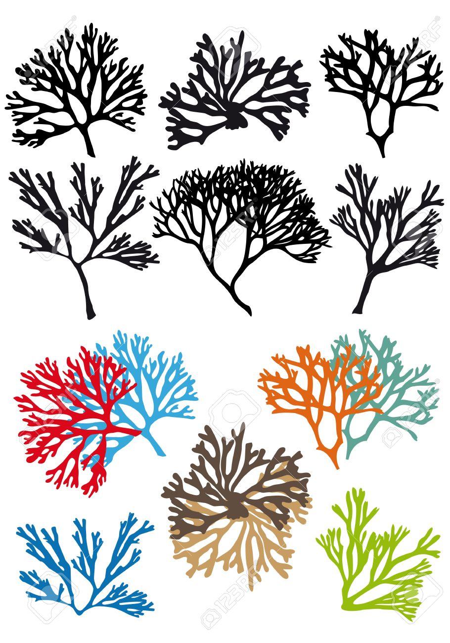 Los Arrecifes De Corales Conjunto, Elementos De Diseño Vectorial ...