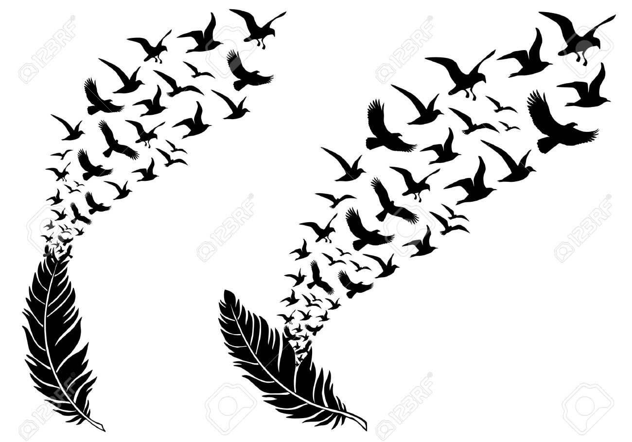 Line Art Feather : Feathers with free flying birds vector illustration for a wall