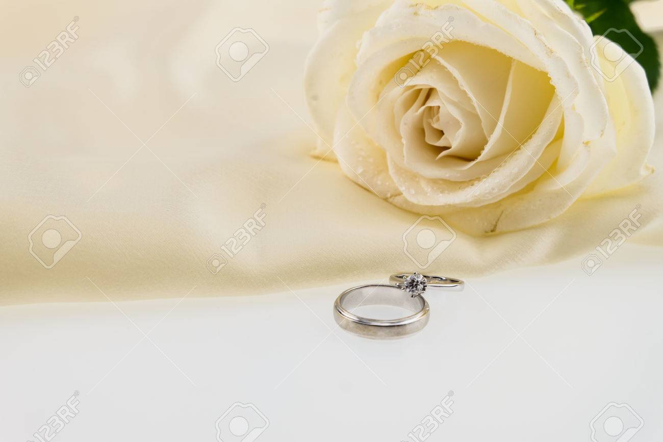 Stock Photo Wedding Ring And White Rose On Ivory Silk Satin: Ivory Roses And Wedding Rings At Reisefeber.org
