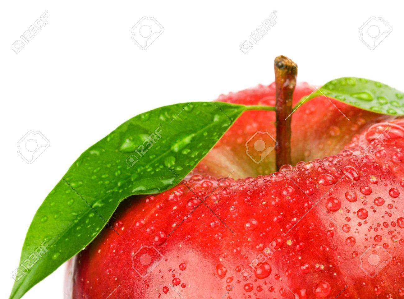 Ripe red apple on a white background - 9105034